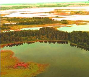 Озера Завьялово